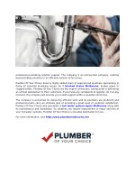 professional plumbing solution support