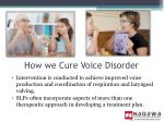 how we cure voice disorder