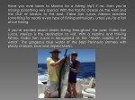 have you ever been to mexico for a fishing trip