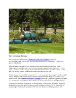 uses for annual ryegrass