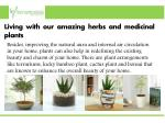living with our amazing herbs and medicinal plants