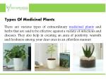 types of medicinal plants