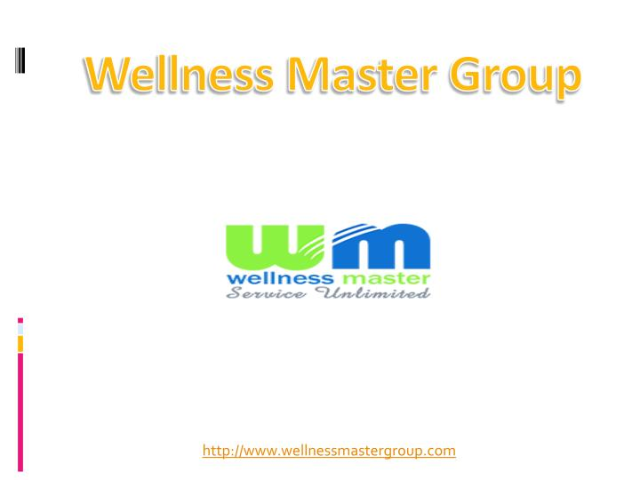 wellness master group n.