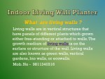 what are living walls living walls