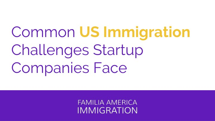 common us immigration challenges startup n.