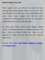 perfect look for your site these experts work