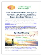 best famous indian astrologer in new york