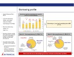 borrowing profile