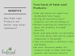 true facts of palm leaf