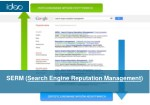 serm search engine reputation management