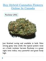 buy hybrid cannabis flowers online in canada