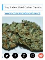 buy indica weed online canada