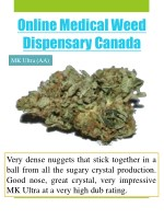online medical weed dispensary canada