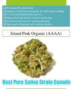 premium bc grown bud organic gaia green nutrients