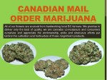 canadian mail order marijuana all of our flowers