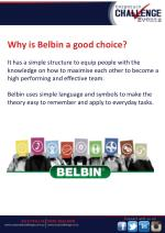 why is belbin a good choice it has a simple