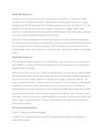 sample mini analysis 2