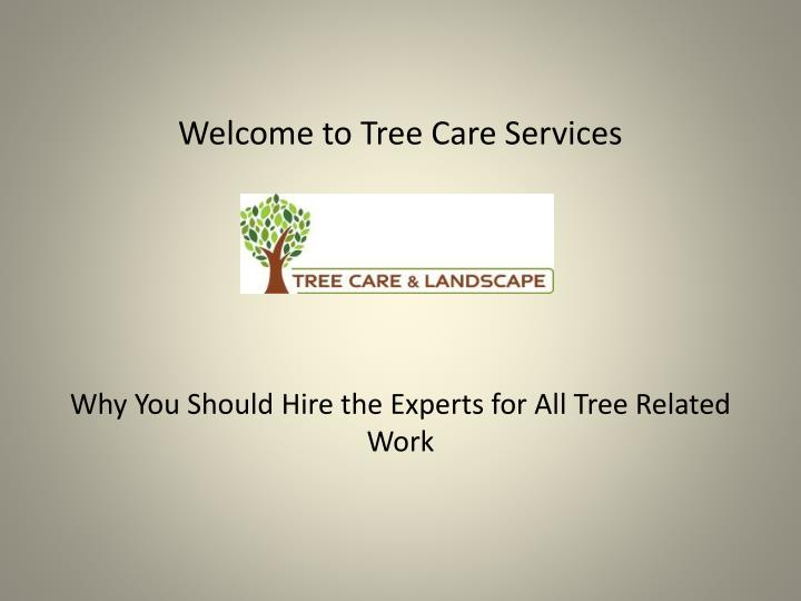 welcome to tree care services n.