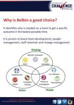 why is belbin a good choice it identifies