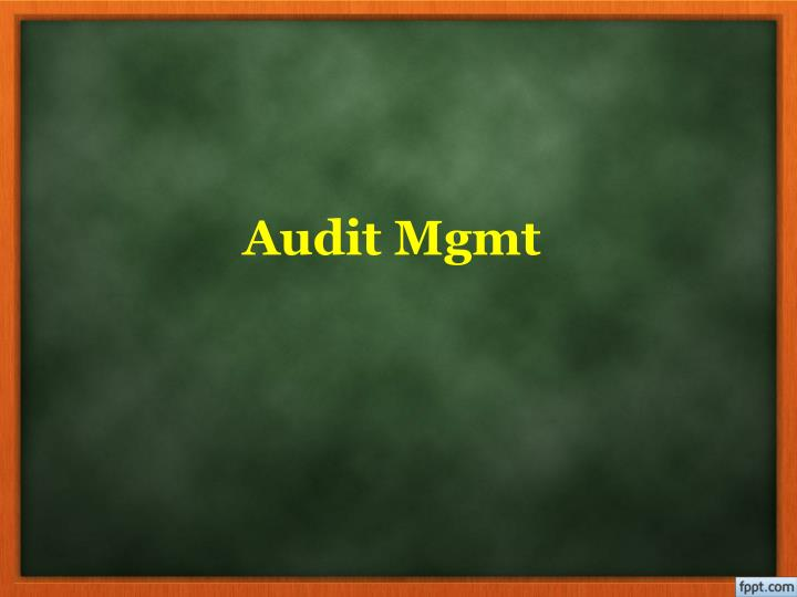 audit mgmt n.