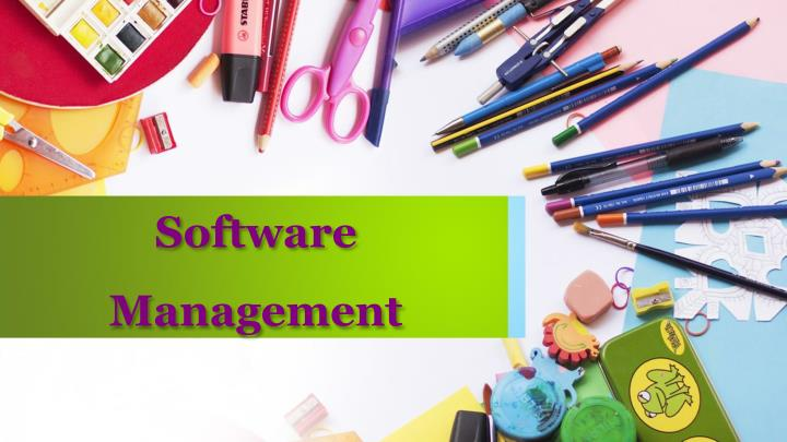 software management n.
