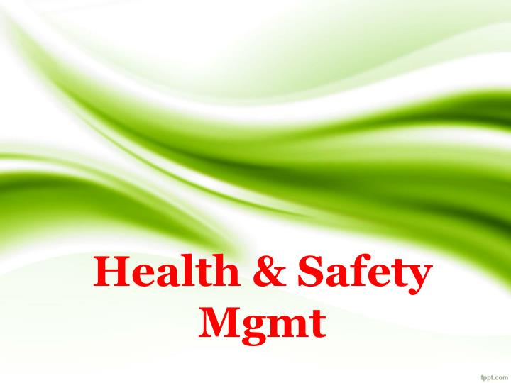 health safety mgmt n.