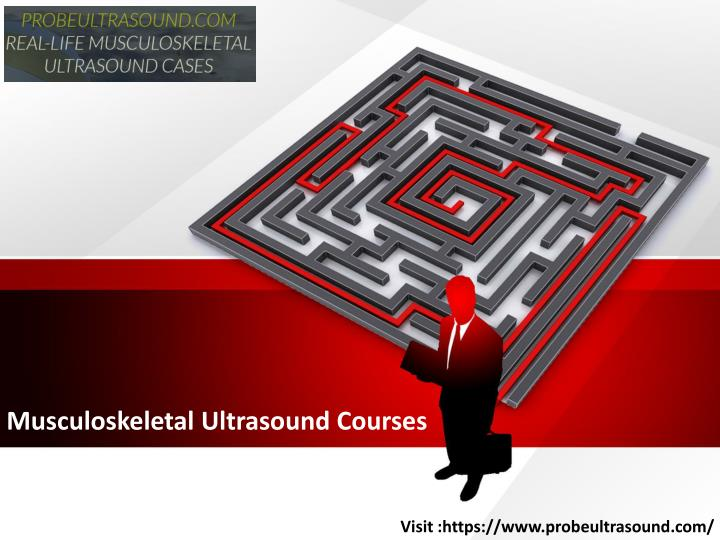 musculoskeletal ultrasound courses n.