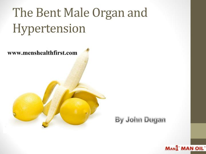 the bent male organ and hypertension n.