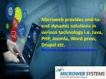 microweb provides end to end dynamic solutions