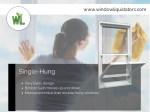 www windowliquidators com 1