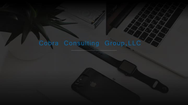 cobra consulting group llc n.