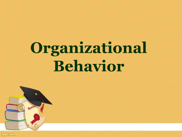 organizational behavior n.