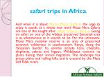 safari trips in africa