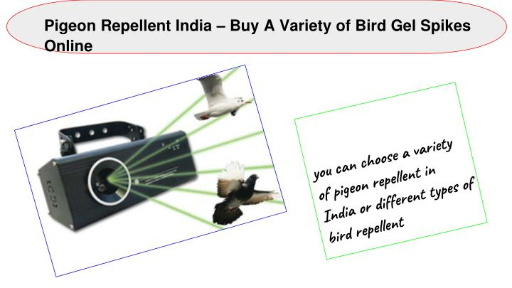 pigeon repellent india buy a variety of bird n.