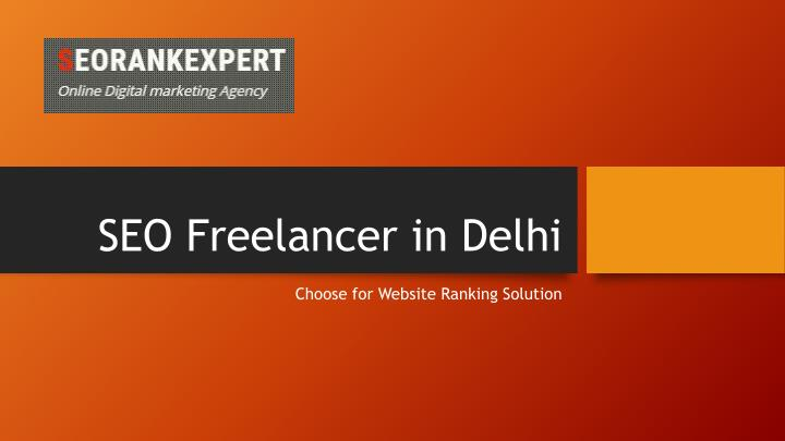 seo freelancer in delhi n.