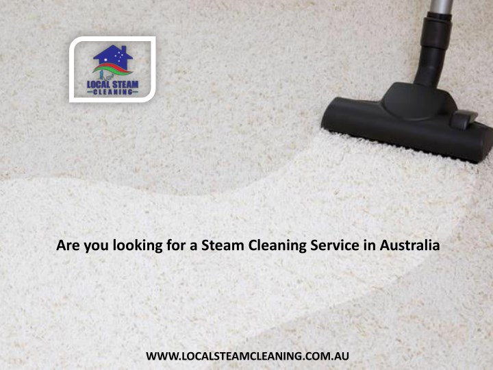 are you looking for a steam cleaning service n.