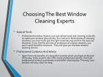 choosing the best window cleaning experts