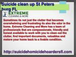 suicide clean up st peters burg fl 2