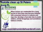 suicide clean up st peters burg fl 3