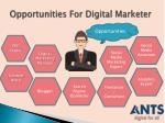 opportunities for digital marketer