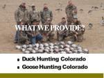duck hunting colorado goose hunting colorado