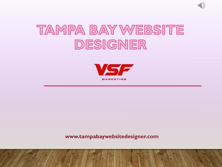 tampa bay website designer n.