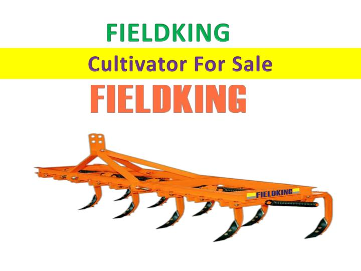 fieldking n.
