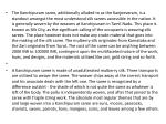 the kanchipuram saree additionally alluded