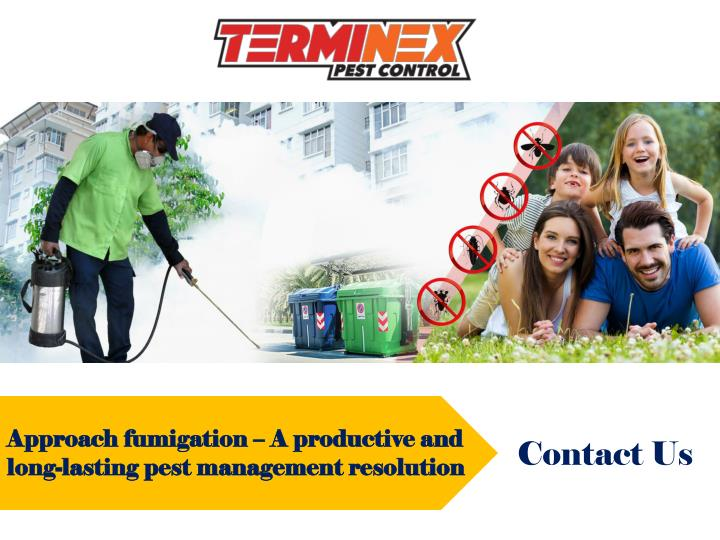 approach fumigation a productive and long lasting n.