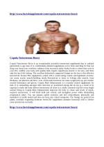 http www facts4supplement com copula testosterone