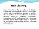 brick cleaning 1