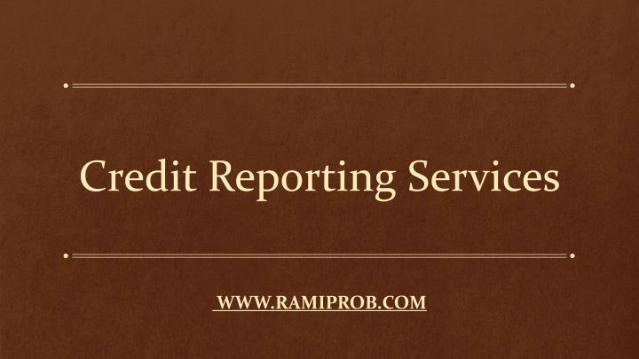 credit reporting services n.