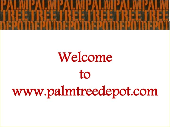 welcome to to w palmtre n.