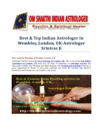 best top indian astrologer in wembley london